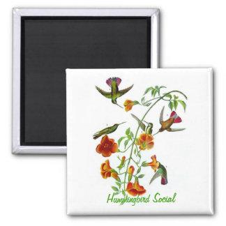 Hummingbird Social Square Magnet