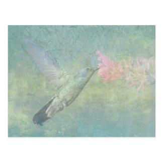 Hummingbird Tune Postcard
