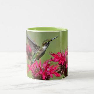 Hummingbird Two-Tone Mug