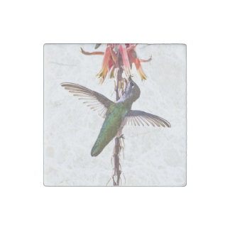 Hummingbird wings stone magnet