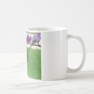 Hummingbird with Orchid Coffee Mugs