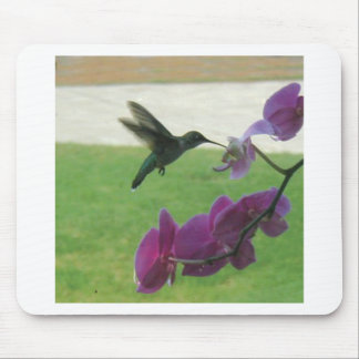 Hummingbird with Orchid Mouse Mat