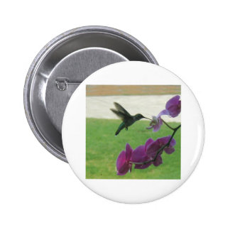 Hummingbird with Orchid Pinback Button