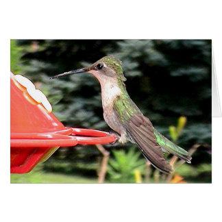 Hummingbirds 2005-0915 card