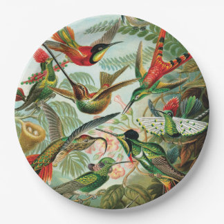Hummingbirds by Ernst Haeckel Paper Plate
