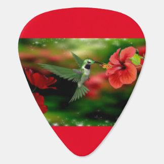 Hummingbirds Guitar Pick