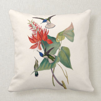 Hummingbirds in Coral Bean Botanical Throw Pillow