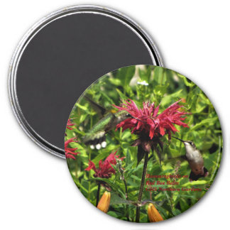 Hummingbirds on Red Bee Balm  GHS Northern Gardens Magnet