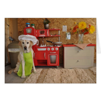 Humorous birthday card, dog dressed as chef. card