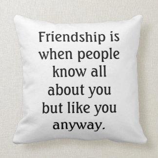 Humorous Friendship Quote Throw Pillow