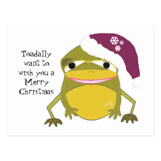 Humorous Frog in a Christmas Hat Postcard