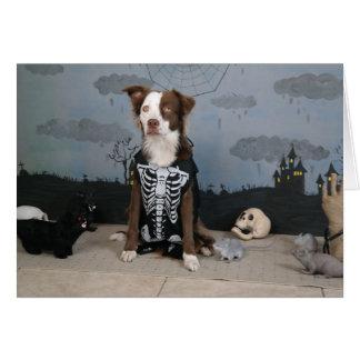 Humorous Halloween card, dog in skeleton costume Card