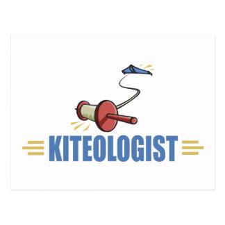 Humorous Kite Flying Postcard