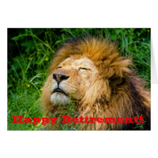 Humorous Napping Lion Card