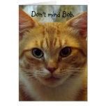 Humourous Cat Birthday Card