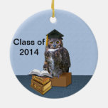 Humourous Class of 2014 Graduation Owl