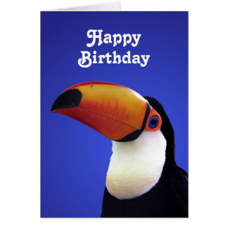 Humourous Toco Toucan Birthday Card