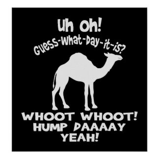 Hump Day Camel Black And White Poster