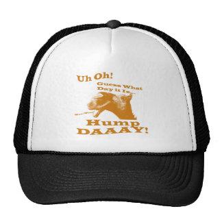 Hump Day Camel! Mesh Hat