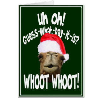 Hump Day Camel Christmas Greeting Cards