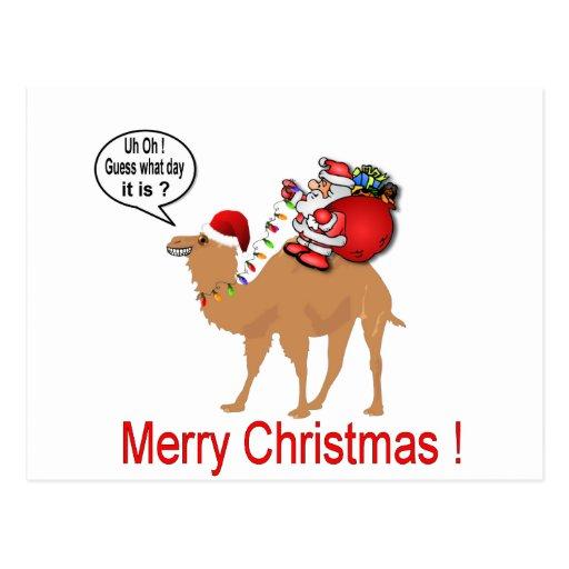 Hump Day Camel Christmas with Santa Postcard