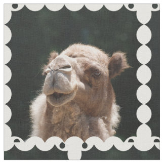 Hump Day Camel Fabric
