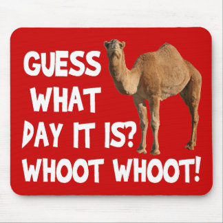 Hump Day Camel Guess What Day It Is Mousepad