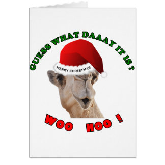 hump day camel merry christmas greeting card