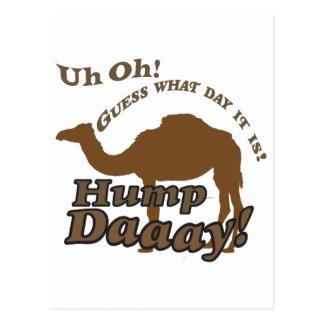 Hump Day Camel! Postcard