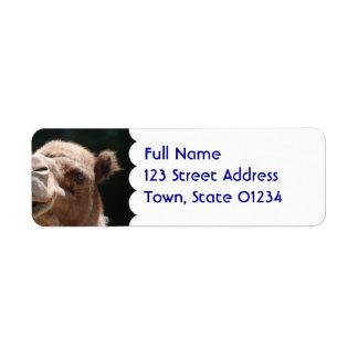 Hump Day Camel Return Address Label