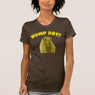 Hump Day Camel Shirts