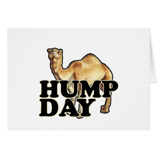 Hump Day Camel T Shirts.png Greeting Cards