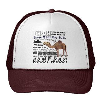 HUMP DAY MESH HATS