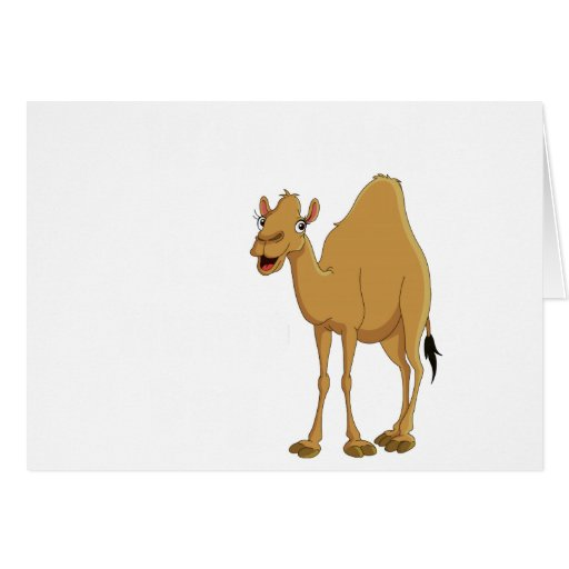 Hump Day Cards
