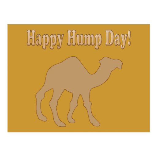 Hump day ! Happy Hump Day ! Postcard