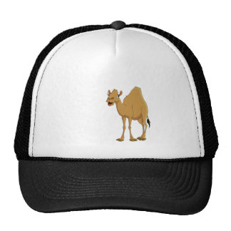 Hump Day Mesh Hat