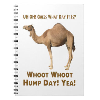Hump Day Note Books