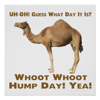 Hump Day Posters