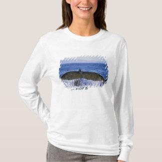 Humpback tail. T-Shirt