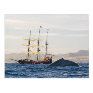 Humpback Whale and Ship Postcard