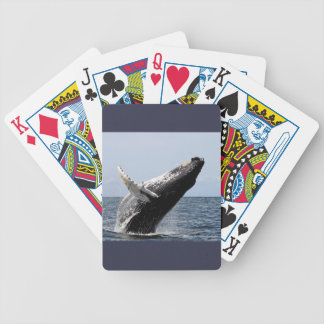 Humpback whale bicycle playing cards