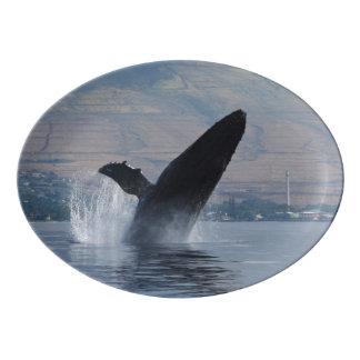 humpback whale breaching porcelain serving platter