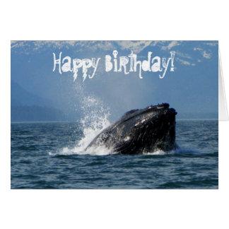 Humpback Whale Feeding Card