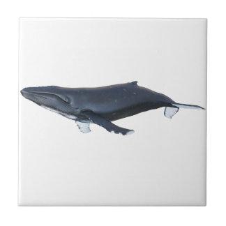 Humpback Whale in Profile Ceramic Tile
