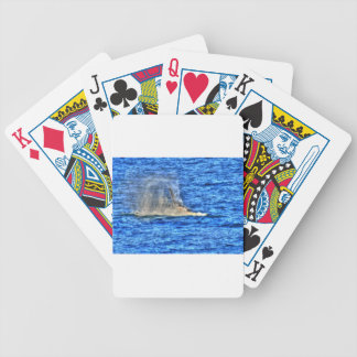 HUMPBACK WHALE QUEENSLAND AUSTRALIA ART EFFECTS BICYCLE PLAYING CARDS