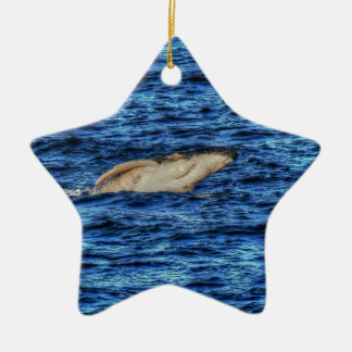HUMPBACK WHALE QUEENSLAND AUSTRALIA ART EFFECTS CERAMIC ORNAMENT