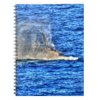 HUMPBACK WHALE QUEENSLAND AUSTRALIA ART EFFECTS NOTEBOOK