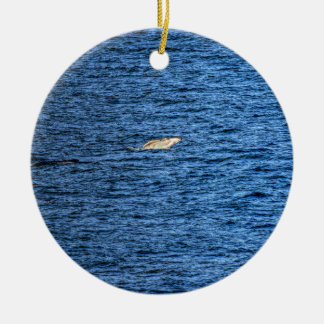 HUMPBACK WHALE QUEENSLAND AUSTRALIA CERAMIC ORNAMENT