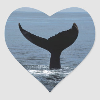 Humpback whale tail hart stickers