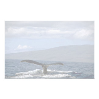 Humpback whale tail, Hawaii Stationery Design